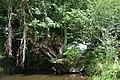 Auray (River)LeLochAmont de la Rivière d'AurayAout2018MorbihanLamiotMFL b 10.jpg