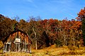 Autumn country barn fall leaves sky - West Virginia - ForestWander.jpg