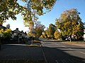 Autumn in suburbia - geograph.org.uk - 998663.jpg