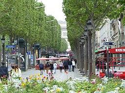 Avenue des Champs Élysées (41)