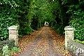 Avenue to Culdrain House. - geograph.org.uk - 266902.jpg