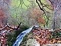 Bad Urach Wasserfall - panoramio (4).jpg