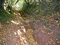 Badly eroded sunken lane on the Three Castles Walk - geograph.org.uk - 2108659.jpg