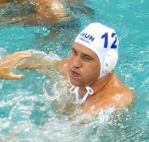 Balázs Hárai - Hárai at the 2016 Olympics