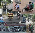 Bali moped col.jpg