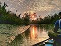 Bangladesh's Sundarbans at dawn (2398829081).jpg