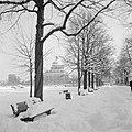 Bankje in de besneeuwde Hofgarten met op de achtergrond de Bayerische Staatskan…, Bestanddeelnr 254-3755.jpg