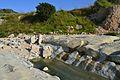 Bassa a la llera del riu Gorgos, Xàbia.JPG