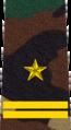 Belarus MIA—06 Major rank insignia (Camouflage).png