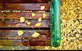 Bench (16044579747).jpg