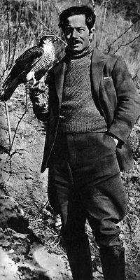 Bergman-sten.jpg