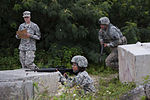 Best Warrior competition tests US Army National Guard, Reserve Soldiers 150308-F-AD344-222.jpg