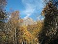 Biella-Trecciolino 71105-30-bis.jpg