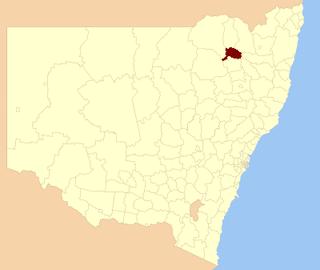 Bingara Shire Local government area in New South Wales, Australia