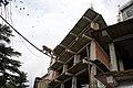 BirG007-Dharamsala.jpg