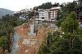 BirG068-Dharamsala.jpg