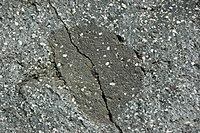 Black porphyritic dacite (upper Holocene, 14 May 1915; Devastated Area, Lassen Volcano National Park, California, USA) 24 (37575924341).jpg