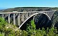 Bloukrans Bridge N2.jpg
