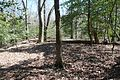 Boones Mounds, Arkansas DSC 0898 (8564688007).jpg