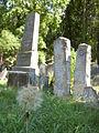 Boskovice-Jewish cemetery9.jpg