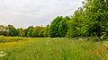 Boswal om bloemenweide. Locatie, Natuurterrein De Famberhorst 02.jpg