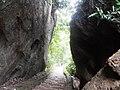 Botanical Garden and Eco-Park, Sitakunda (04).jpg