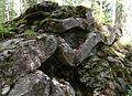 Bråfallsstenen, 2016b.jpg