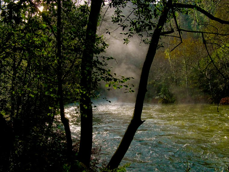 Parque natural das Fragas do Eume.