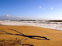 Breakers on The Shore at Playa del Rey.jpg