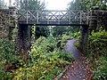 Bridge over The Dene, Saltwell Park - geograph.org.uk - 1579921.jpg