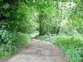 Bridleway to English Bicknor - geograph.org.uk - 1427666.jpg