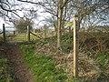 Bridleway to Hope Bowdler Hill - geograph.org.uk - 1211781.jpg
