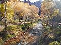 Bright Angel Creek.JPG