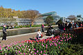 Brooklyn Botanic Garden New York May 2015 006.jpg