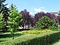 Brzeg, Poland - panoramio (16).jpg