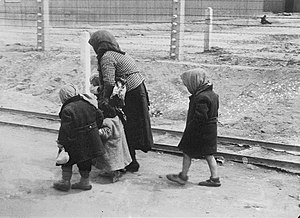 Adolf Eichmann - Hungarian woman and children arrive at Auschwitz-Birkenau, May or June 1944 (photo from the Auschwitz Album)