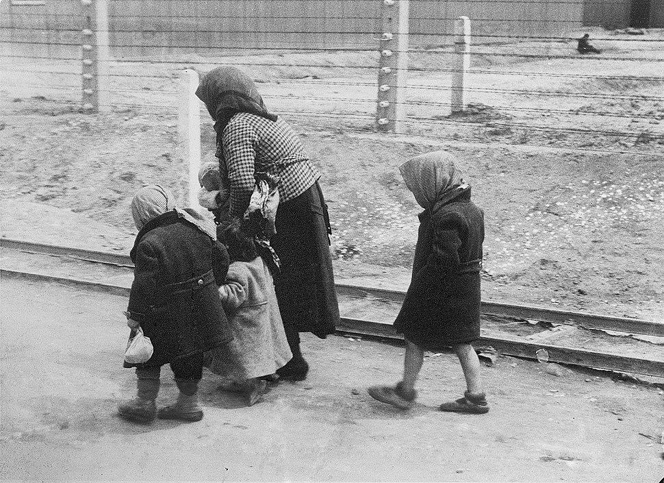 Bundesarchiv Bild 183-74237-004, KZ Auschwitz-Birkenau, alte Frau und Kinder