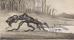 Bunyip - Bunyip (1935), artist unknown, from the National Library of Australia digital collections, demonstrates the variety in descriptions of the legendary creature.