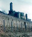 Burg Hornberg (2965212821).jpg