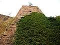 Burgruine Liebeneck, 1263 erste urkundliche Erwähnung, 1692 Zerstörung durch französ. General Chamilly. Wierderaufbau um 1770. - panoramio (2).jpg