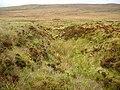 Burn through a bog - geograph.org.uk - 267361.jpg