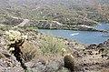 Butcher Jones Trail to Pinter's Point Loop, Tonto National Park, Saguaro Lake, Ft. McDowell, AZ - panoramio (120).jpg