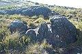 Cabeças de Pedra - Circuito do Índio^ - panoramio.jpg
