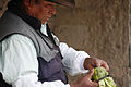 Cactus Fruit - Village of Maca (8447822330).jpg