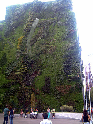 Vertical garden by Patrick Blanc at CaixaForum...