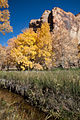 Calf Creek Autumn (4080129427).jpg