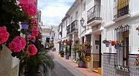 Calle San Miguel red flowers - Estepona Garden of the Costa del Sol.jpg