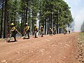 Camillo Fire 2015-06-22 Burnout Operations (19091815805).jpg