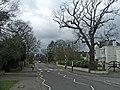 Camlet Way, Hadley Wood, Hertfordshire, looking west - geograph.org.uk - 368896.jpg