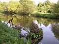 Camowen River - geograph.org.uk - 1532576.jpg